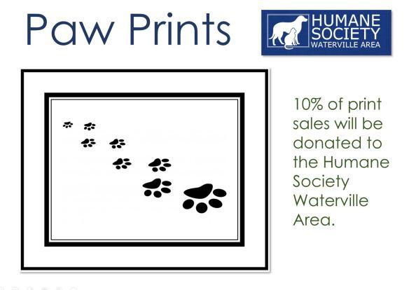 paw prints[2179]